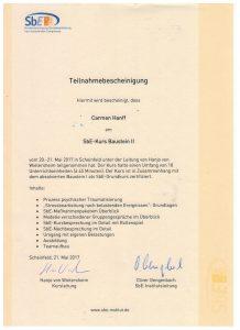 SbE-Kurs Baustein II